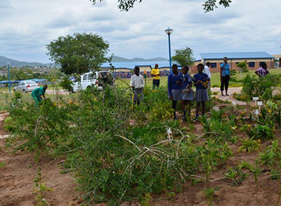 Learners look on as a Useful Plants Project team member works on their school garden.