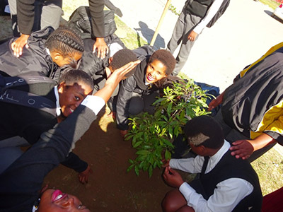 Enthusiastic Vusisizwe High School learners planting trees